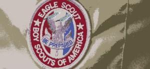 eagle-palms-on-badge