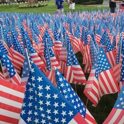 Flag-Day-2