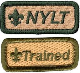 NYLT-patch-and-Trained-patch