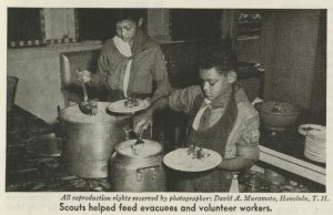 pearl-harbor-scouts-2