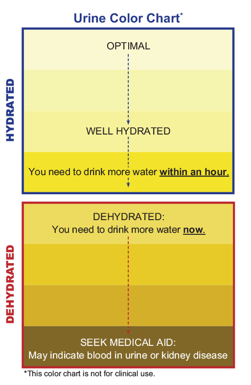 This Is How To Check Your Urine Color To Tell If You'Re Dehydrated