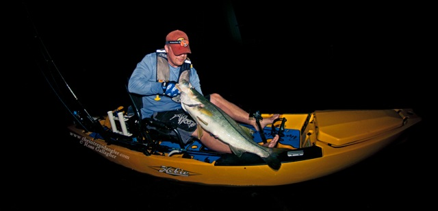 Ross 44inch AFTCO Hobie Hogy Snook Paddle Tail WM