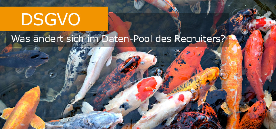DSGVO Recruiting Datenpool