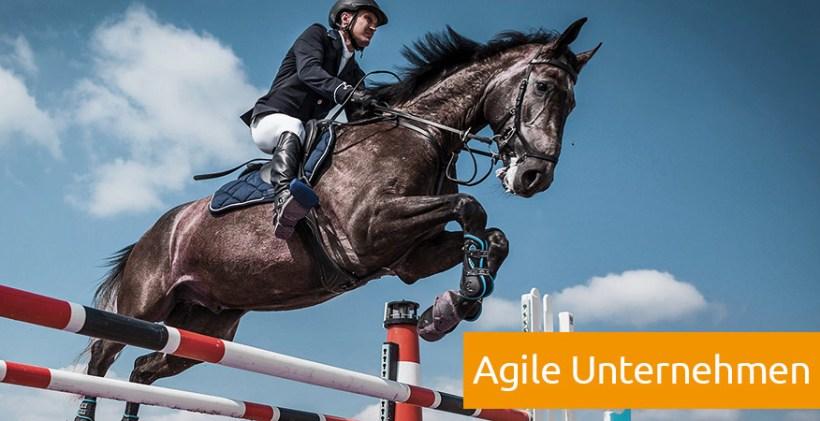 Agile Unternehmen Definition