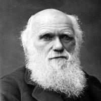 Charles Darwin über Wandel