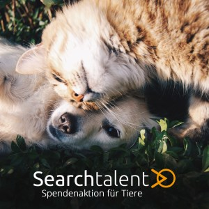 spendenaktion-tierheim-berlin-searchtalent