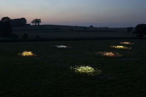 Field of Light