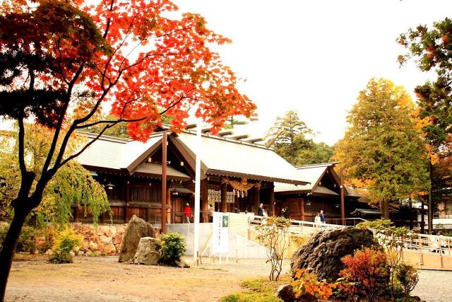 北海道賞楓 | 東南旅遊