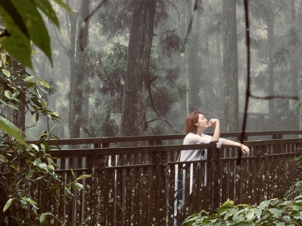 溪頭森林天空步道 | 東南旅遊