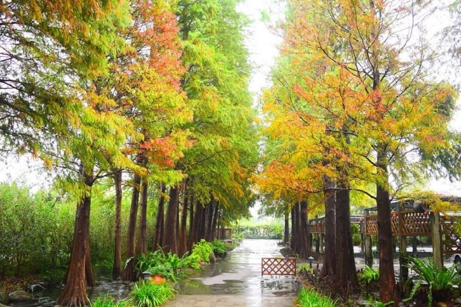 菁芳園 | 東南旅遊