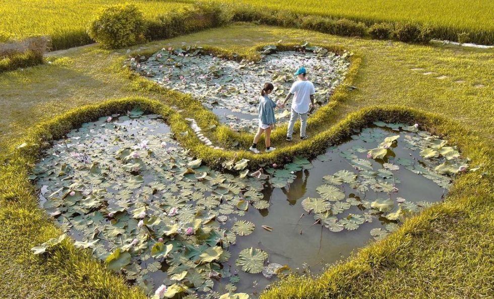 雙心池塘 | 東南旅遊
