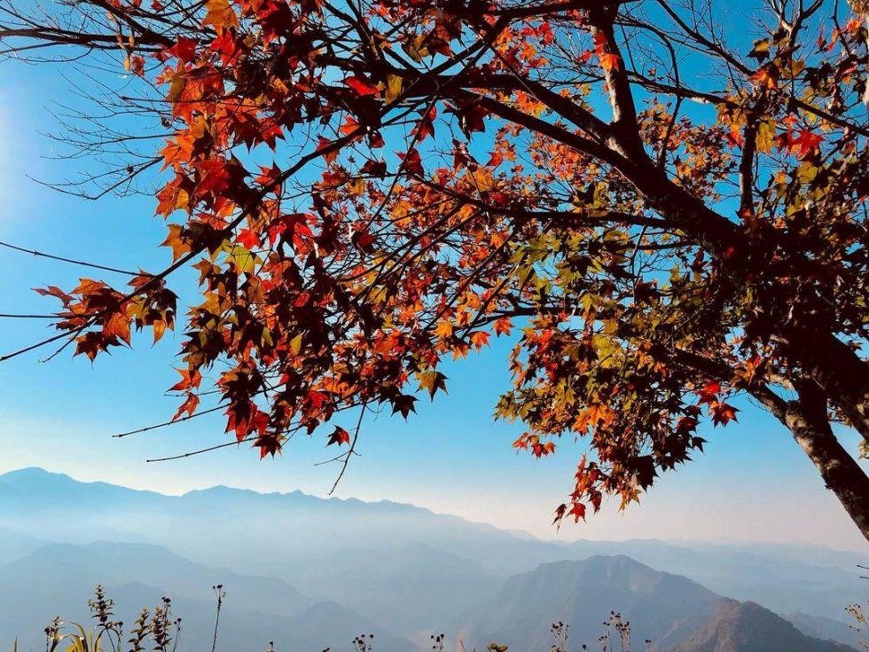 苗栗馬拉邦山|東南旅遊