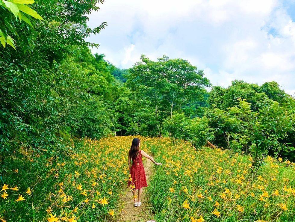台中沐心泉休閒農場|照片提供:IG @chen_godi