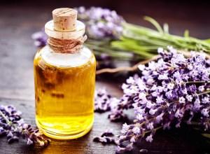 Les bienfaits de l'huile essentielle de lavande bio