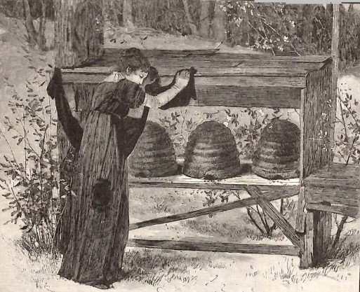 Putting bees into mourning