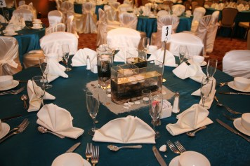This is the Radisson's place setting. They provide all glassware, silverware, china, and linens. Some linens - chair covers and colored linens - are upgrades that are an additional fee.