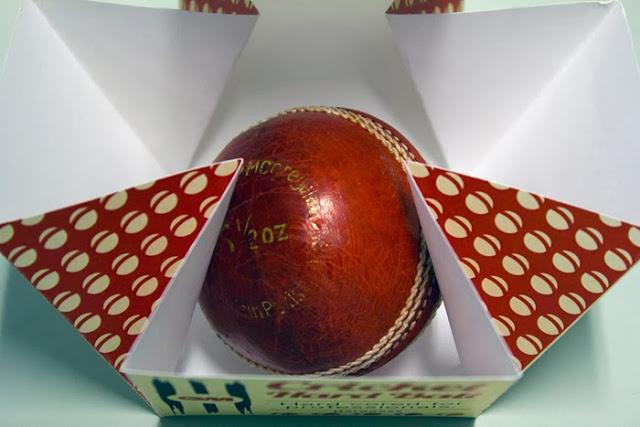 GM Cricket (6)