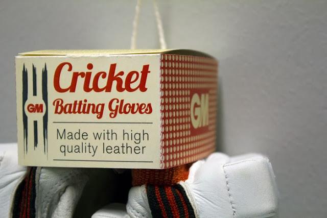 GM Cricket (9)
