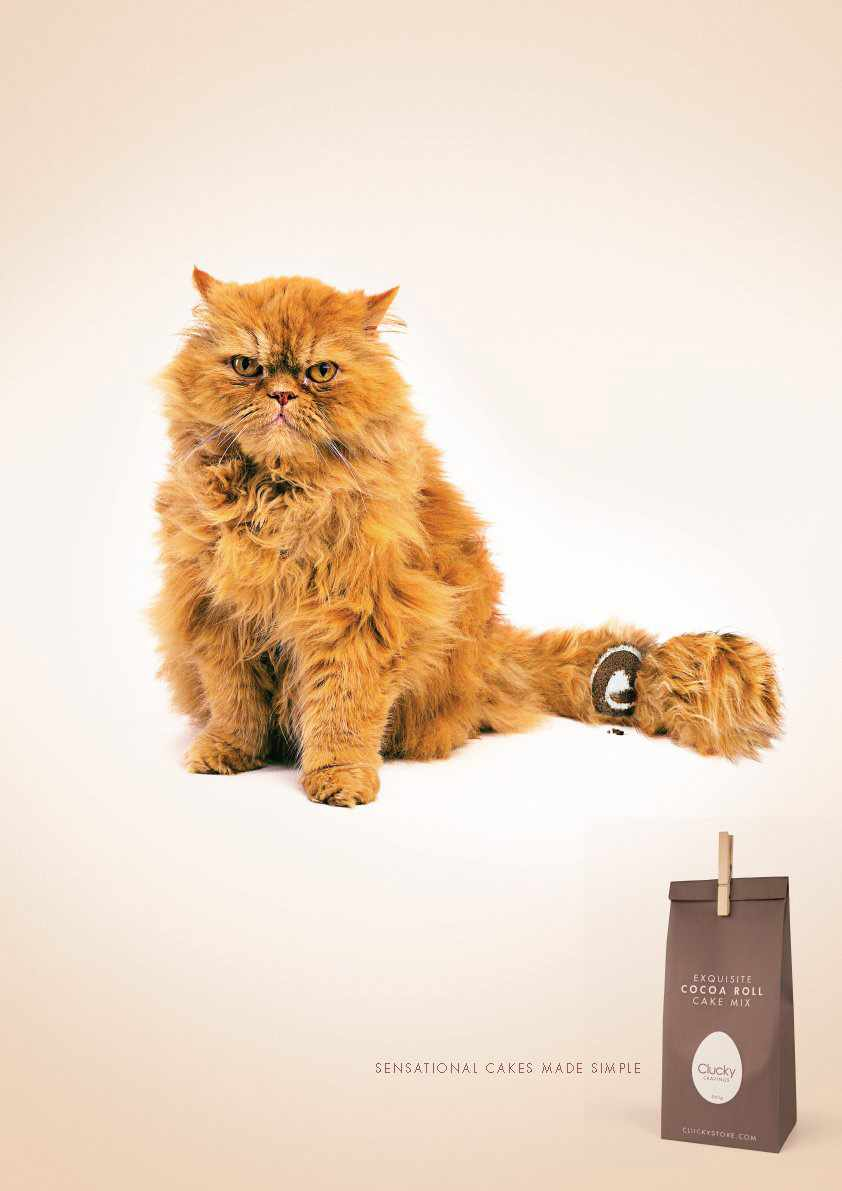 clucky-cake-cat