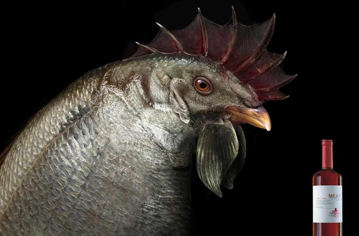 chicken_2400