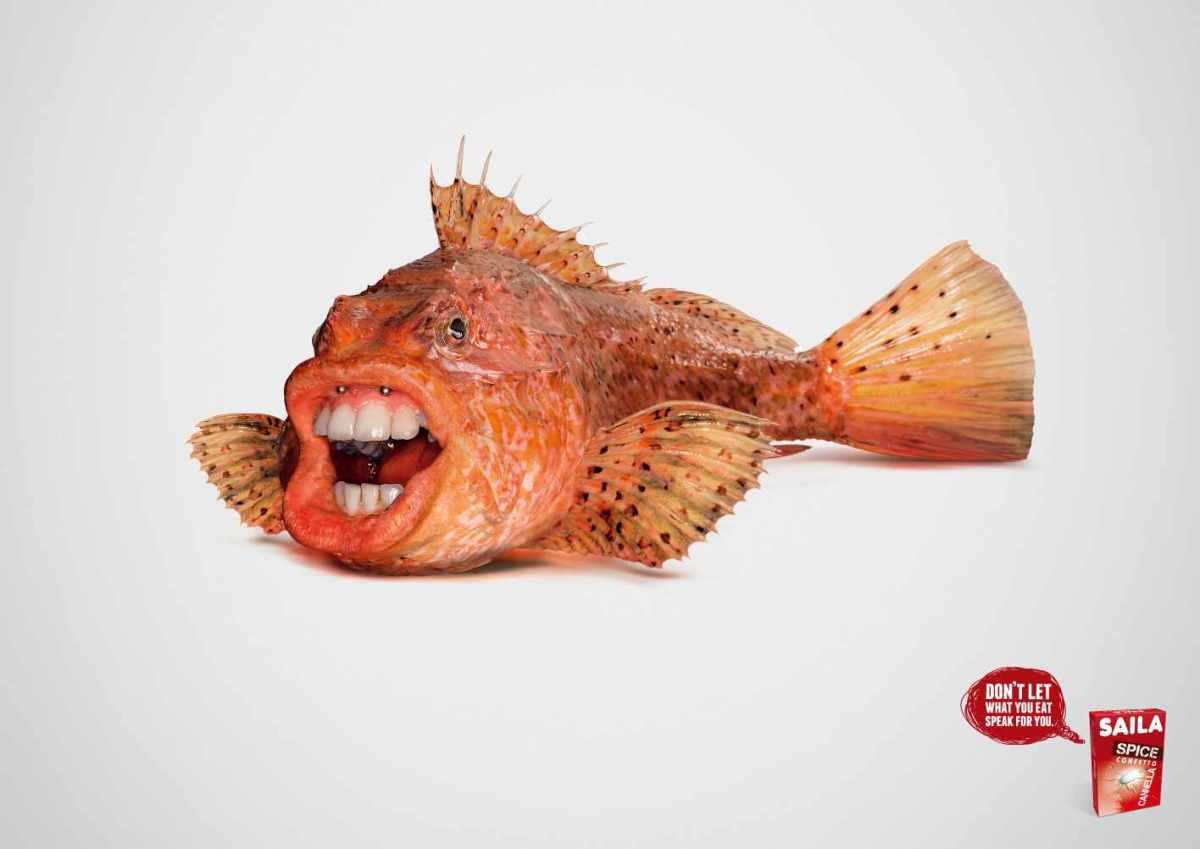 saila-fish