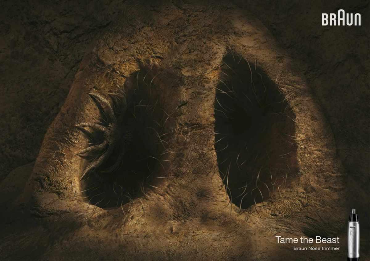 140417_cavenose-board_spider_aotw_0