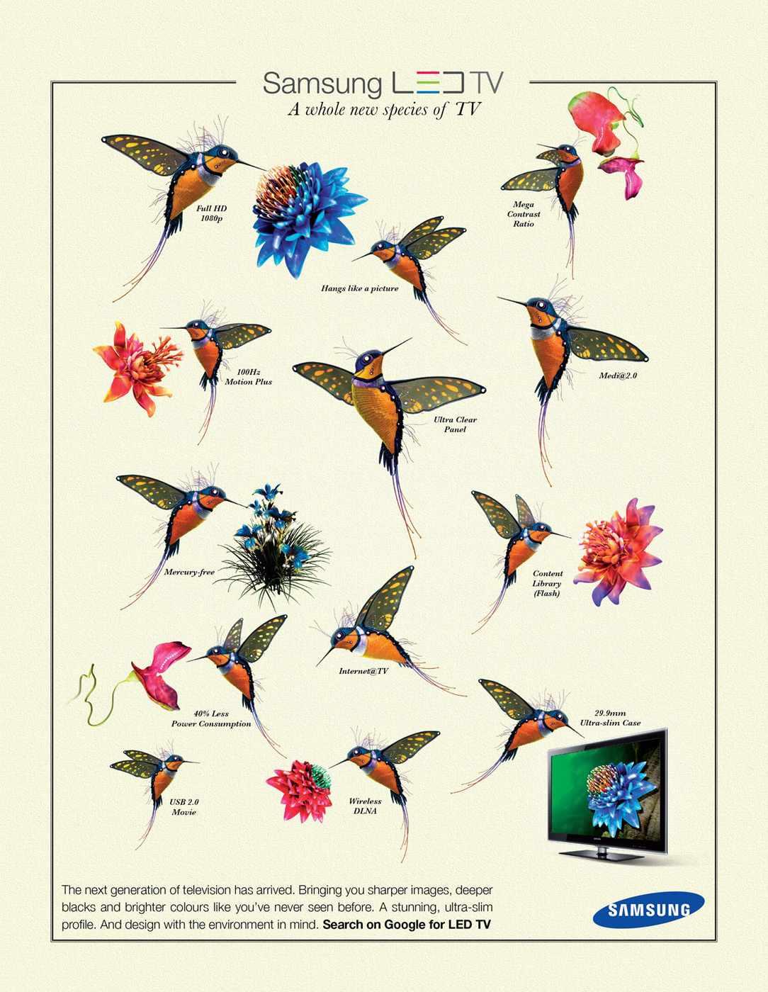 samsungbirds