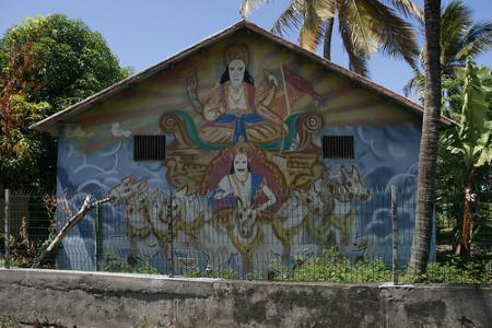 Ile de la Réunion - janvier 2011 - 095