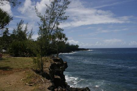 Ile de la Réunion - janvier 2011 - 303