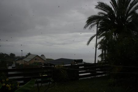 Ile de la Réunion - janvier 2011 - 342