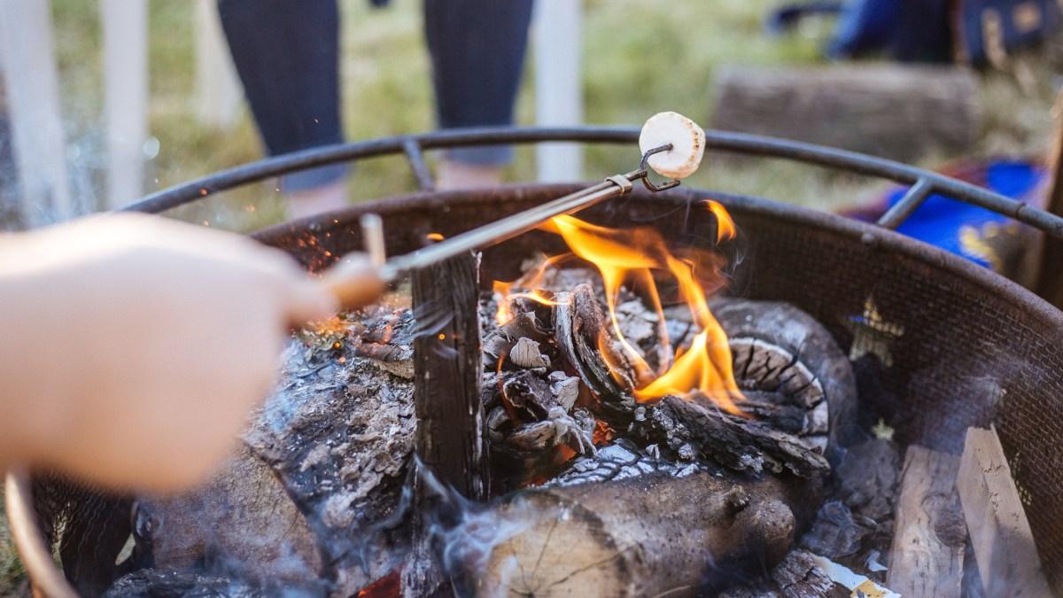 Backyard Campfire Roasting S'mores