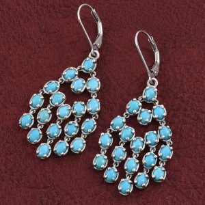 Sleeping beauty turquoise leverback earrings