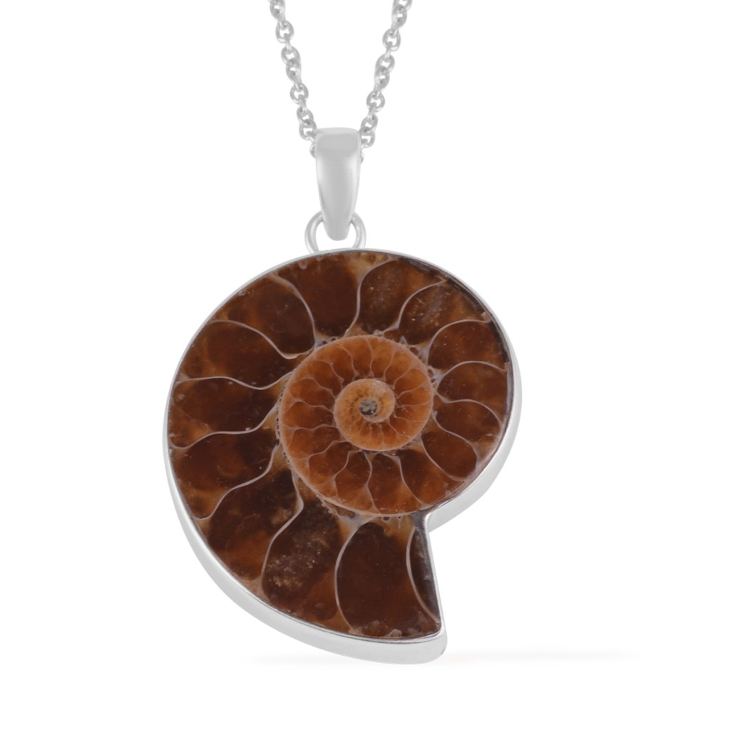 Ammonite pendant with sterling silver chain.