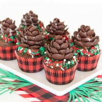 Chocolate Pine Cone Cupcakes Tutorial & Tips