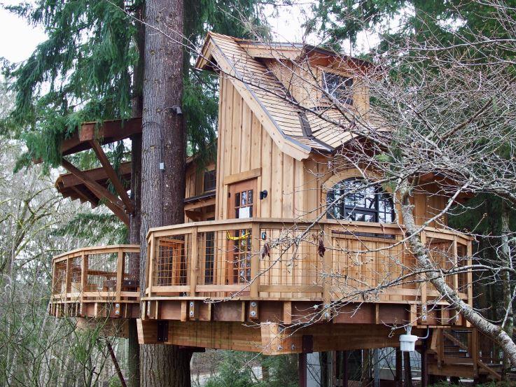 Microsoft Treehouse