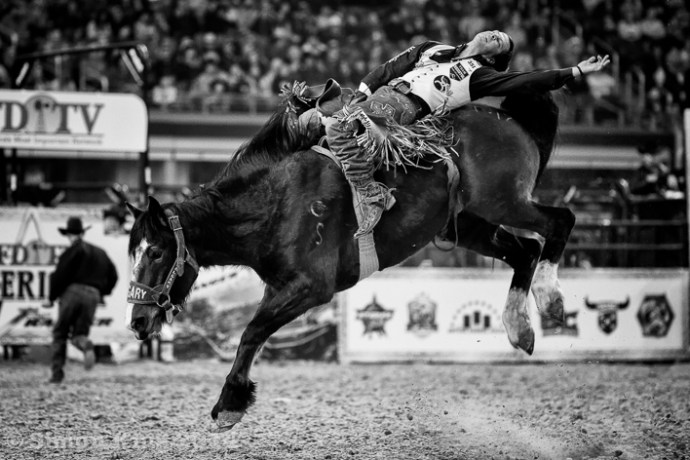 Rodeo - The American - Dallas Texas -  Sunday 2nd March 2014 - AT&T Stadium - Dallas