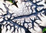 Шляпка подосиновика на острове Кильдин в Баренцевом море. Шляпки этих подосиновиков, растущих посреди тундры растрескиваются самым причудливым образом.
