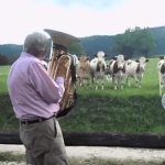 Viral video: French cows are for Jazz