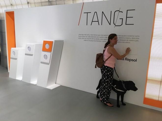 Chica ciega leyendo el cartel en braille de Tange y de fondo las urnas donde se mete la mano para tocar lo que esconden.