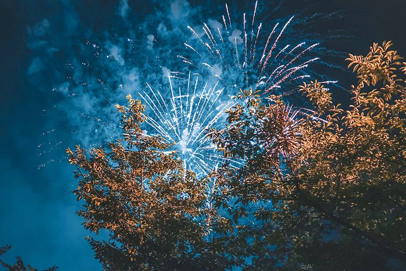 Fireworks going off above trees.