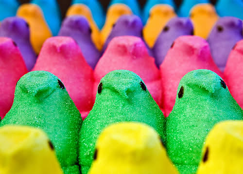 Assorted colors of peeps