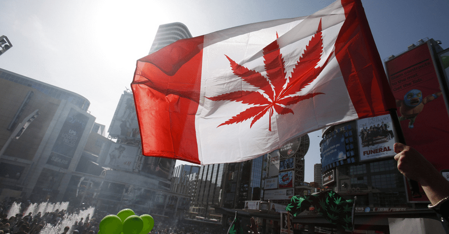 Canadian weed