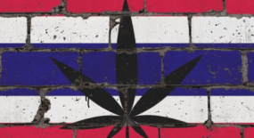 THE THAILAND MEDICAL CANNABIS AFTER LEGALIZATION
