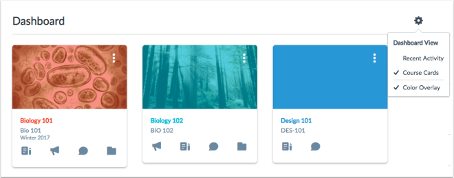 picture of user dashboard showing 3 course cards with color overlay