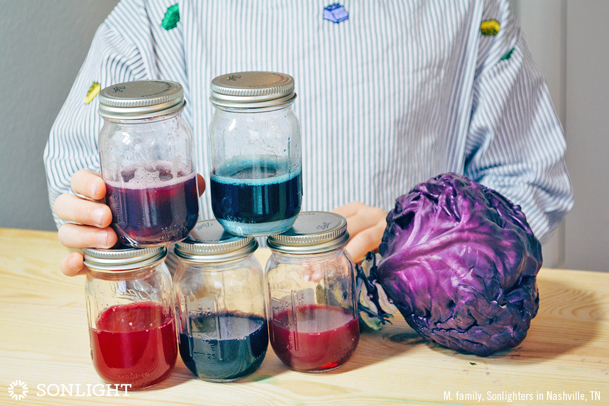 Kitchen Chemistry Testing Ph Levels With Cabbage