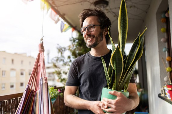Man holding snake plant