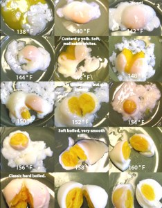 Now also high tech easter eggs sousvide supreme blog rh blogusvidesupreme