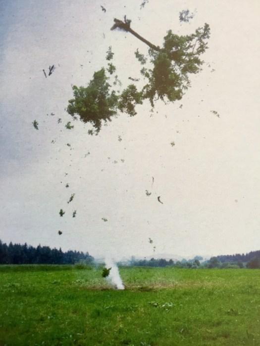 Michael Sailstorfer, Raketenbaum, 2008, Farbsprint auf Aluminium Dibond, Auflage 10, 67 x 54 x 4 cm - Schätzpreis 3,8 TEUR