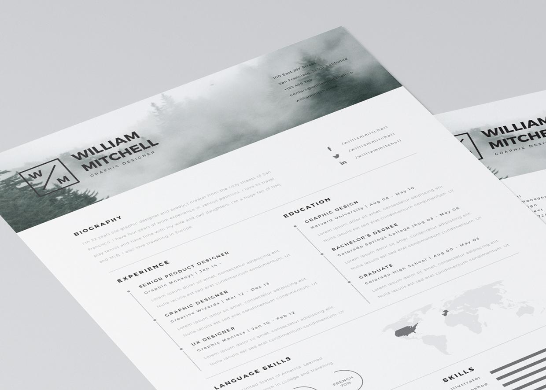 20 Free Editable CV Resume Templates For PS & AI
