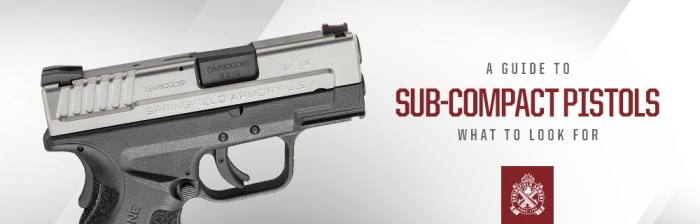 A Guide to Sub-Compact Pistols: What to Look For
